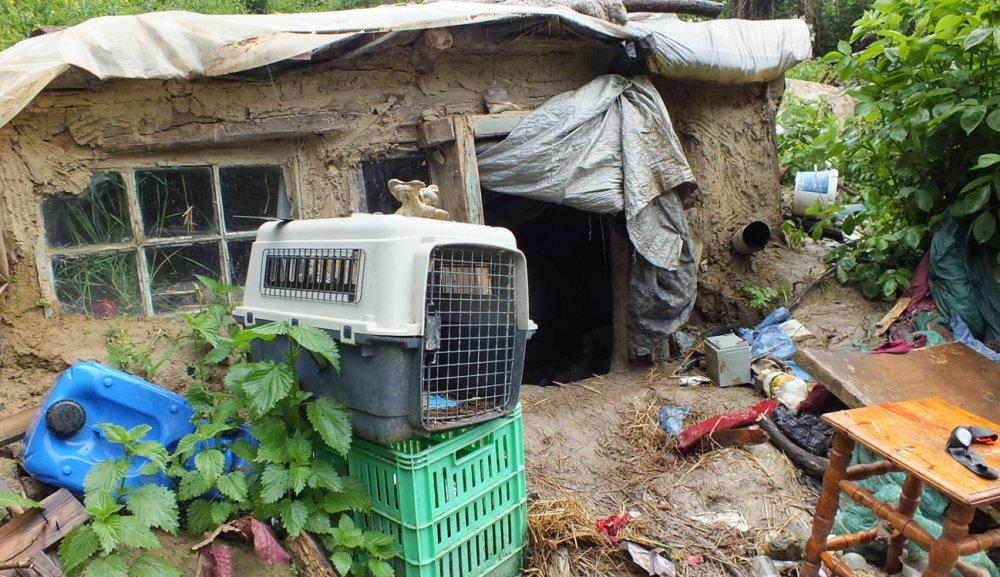 Szabadlábon a kaposvári férfi, aki kunyhójában fogvatartott egy egyetemista lányt