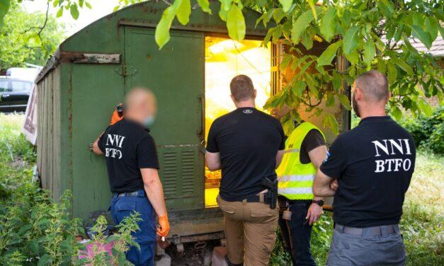 A nyomozókat is meglepte: régi katonai teherautóban termesztették a marihuánát Gyömrőn