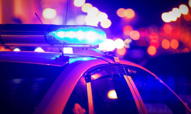 Bébicsősznek csapott fel a budapesti zsarupáros, amíg a hanyag anya ezt csinálta