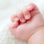 Csecsemőt hagytak egy bokorban Szolnokon – Ilyen állapotban van most a pici