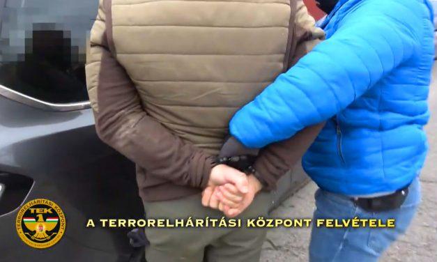 Hatalmas drogfogás Budafokon: Óriási kannabisz ültetvényt lepleztek le, fegyver is volt a termesztőnél