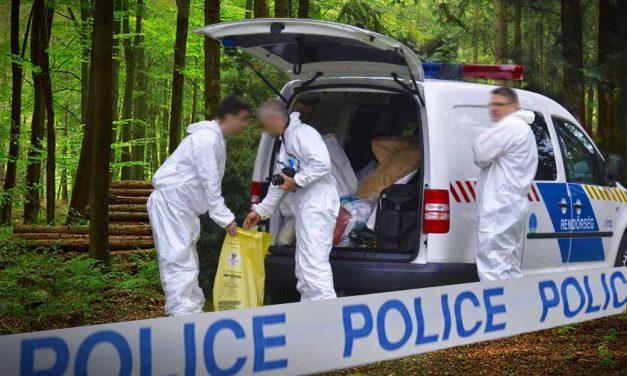 Titokzatos holttestet találtak az M5-ös autópálya mellett, a rendőrség többszáz ezer forintot fizet annak, aki azonosítja az elkövetőt