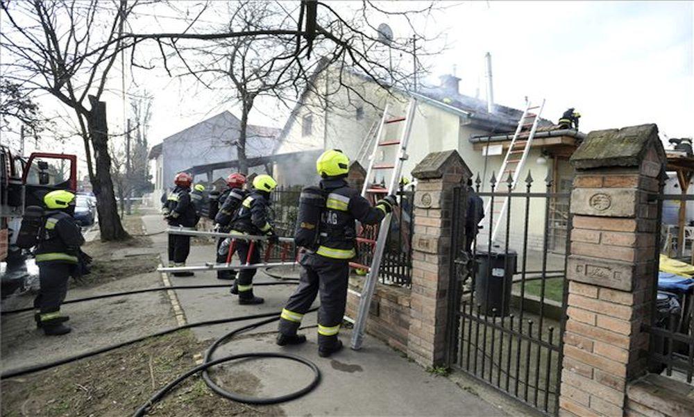Földmunkával foglalkozó cég tetőszerkezete gyulladt ki a budapesti tűzesetben – fotók