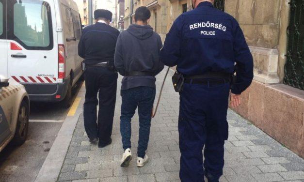 Sorozattolvajt fogtak a rendőrök: az elkövető minden mozdíthatót magával vitt