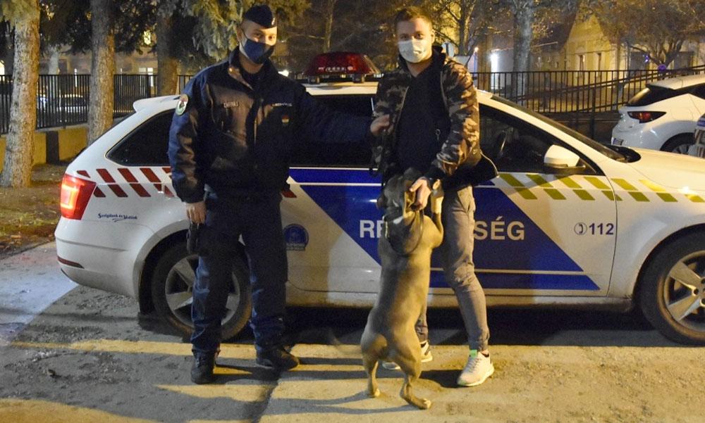 Harci kutyának adták volna tovább a Gödről ellopott 300 ezer forintos kutyust