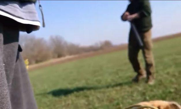 """""""Agyonlőlek a kutyáddal együtt!"""" – üvöltötte töltött puskájával a vadőr egy kutyasétáltató férfinak – videó"""