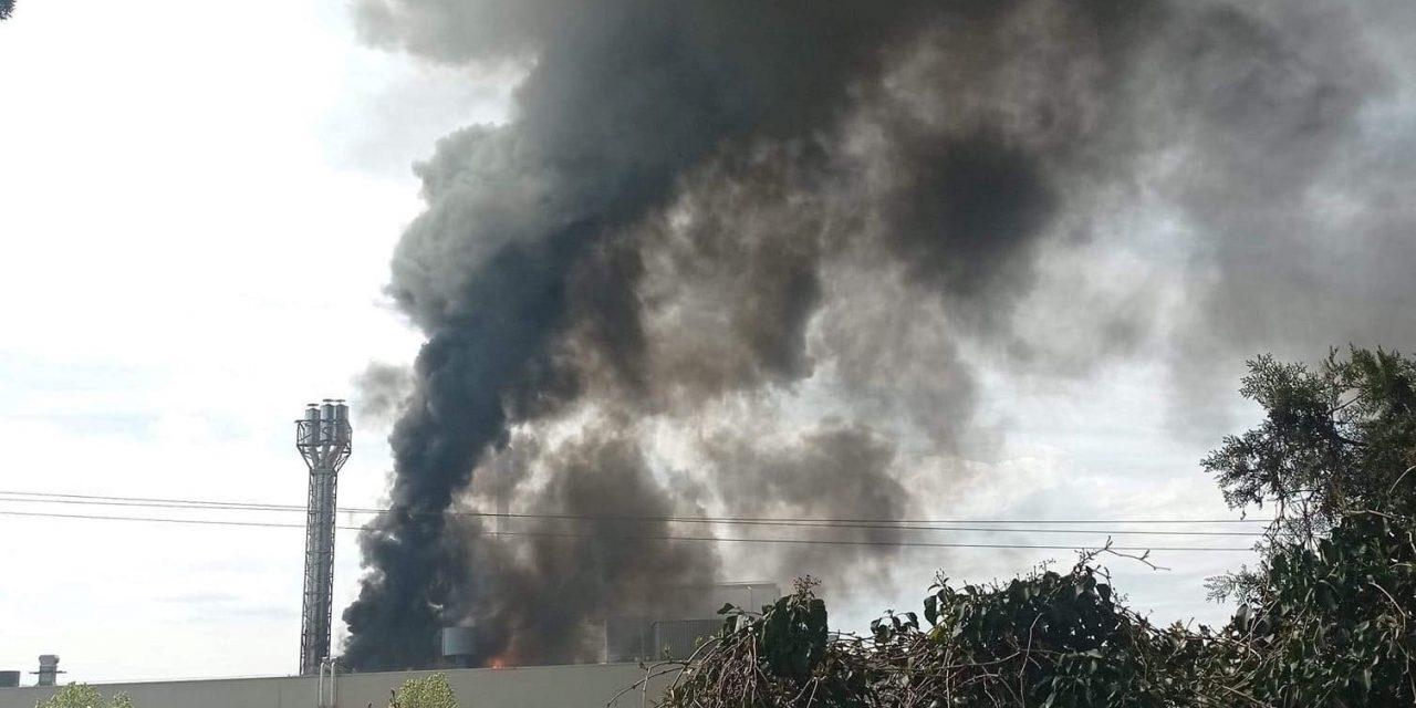 Mentők és tűzoltók a helyszínen – Felcsaptak a lángok a dunakeszi lámpagyárban – fotó