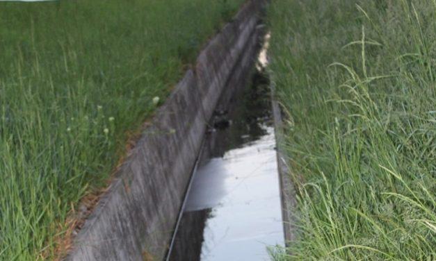 Egy 68 éves nő holttesttét találták meg egy vízelvezető árokban Esztergomban