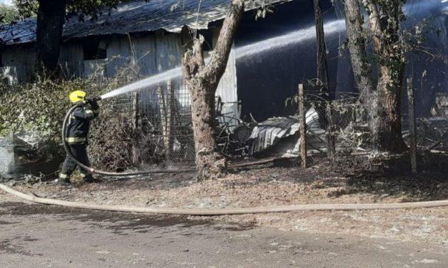 1200 négyzetméteren lángolt egy raktárépület Budapest 14. kerületében – Fotók a helyszínről