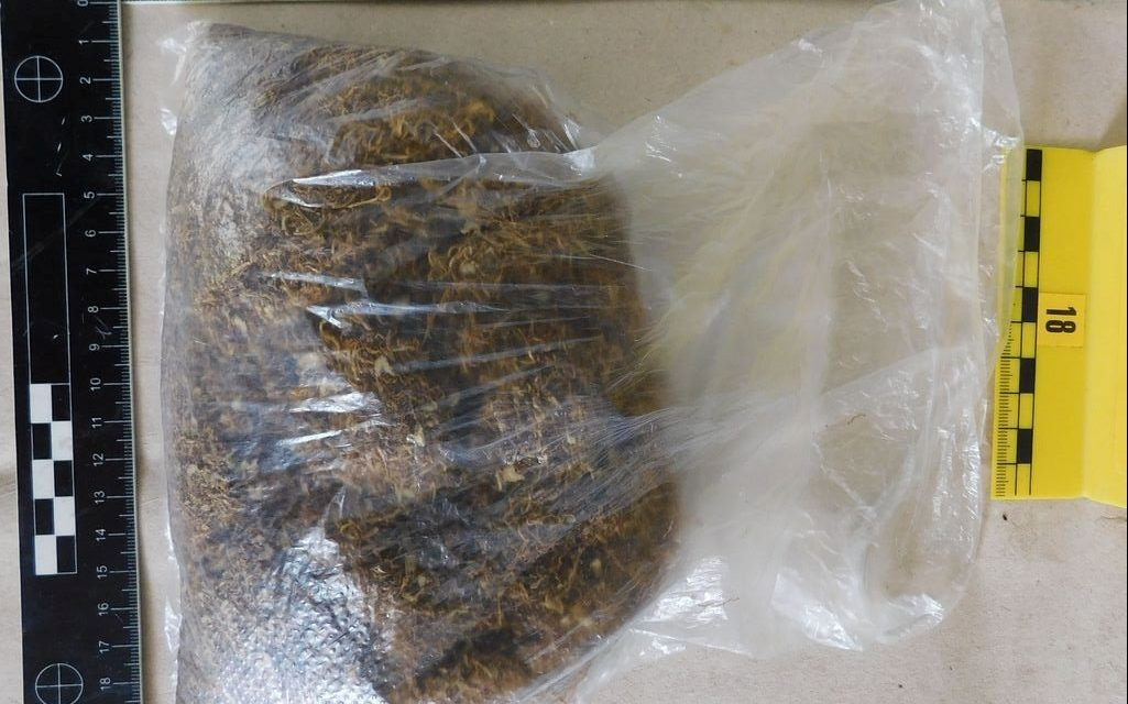 Családi drogbuli: Apa-fiú kábítószer kereskedő párost füleltek le a rendőrök Csokonyavisontán