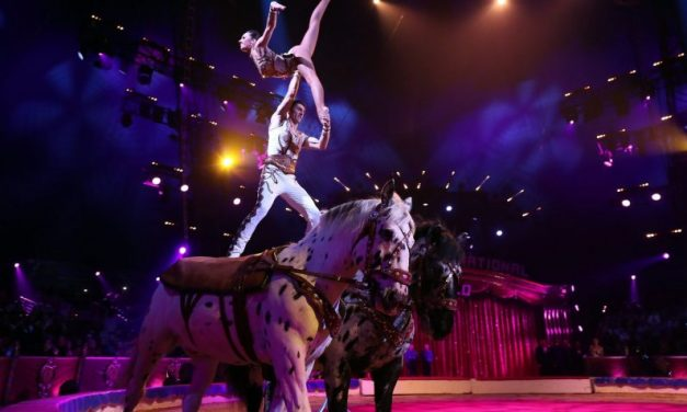 Ágyúból kilőtt artista sérült meg Zamárdiban vendégeskedő cirkuszban, a nézők bepánikoltak a baleset után