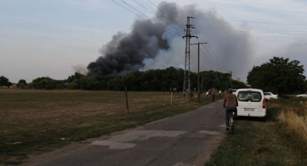 Felcsaptak a lángok Hódmezővásárhelyen: egy állattartó telep gyulladt ki, 240 sertés veszett oda – Fotó a helyszínről